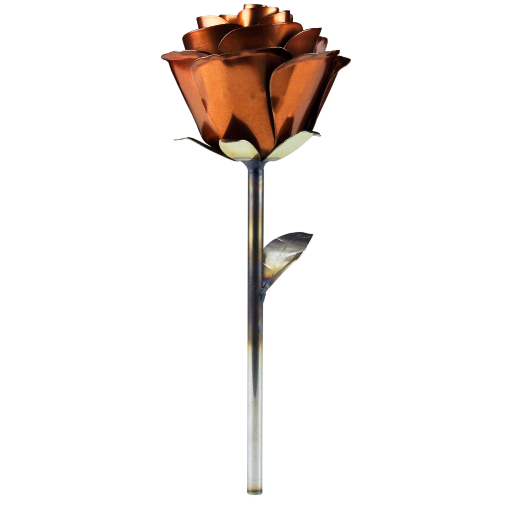 Stainless Rose Burnt Copper